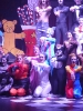 Cats Musical_8
