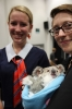 Science Week - Orphan animals